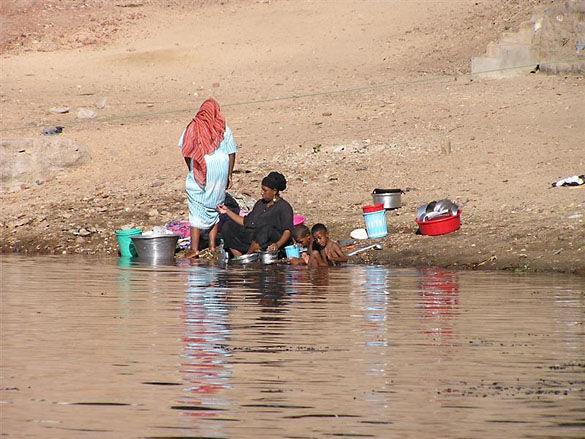 Берег реки Нил. Египет фото