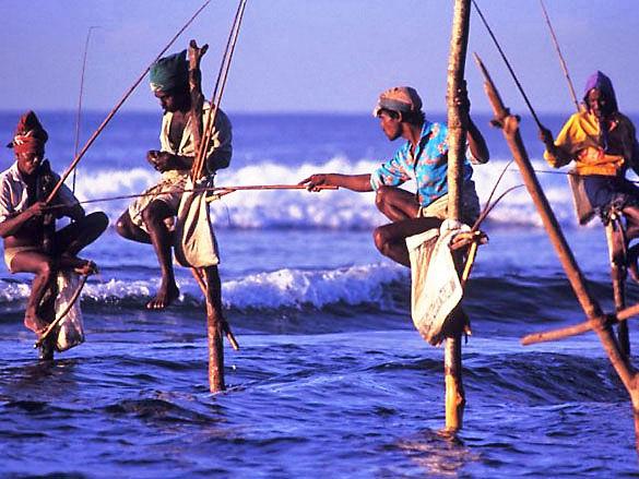 Шри-Ланка. Местные рыбаки фото