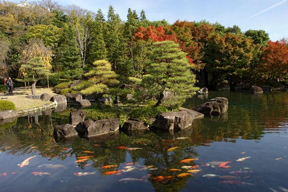 Парк возле замока Химедзи фото