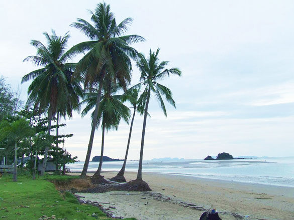 Пляж острова Ко Ланта фото